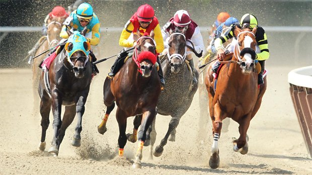 California horse racing betting rules sports personality betting 2021 ford