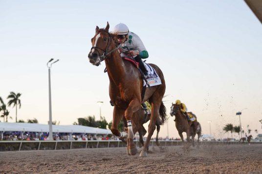 horse racing odds 2018