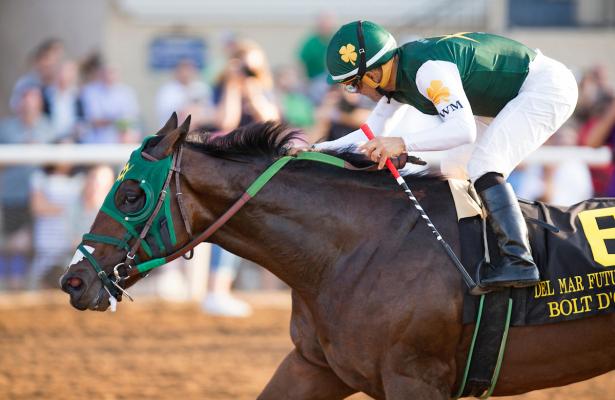 Balt D' Oro horse - Kentucky Derby Odds