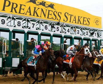 bet on Preakness 2018